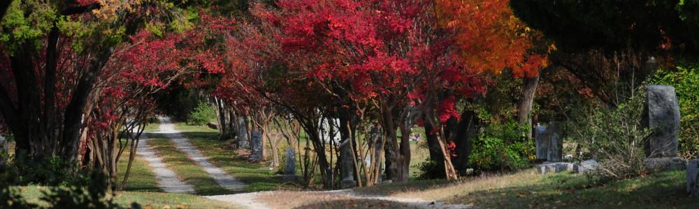 Burial Records | Oak Cliff Cemetery